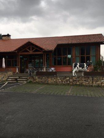Cabuerniga, Spain: Terraza del restaurante. La vaca no es natural.