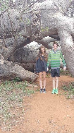 Limpopo Province, Sydafrika: photo1.jpg