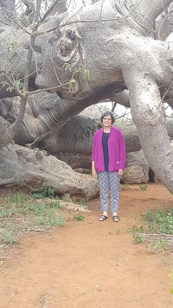Limpopo Province, Sydafrika: photo2.jpg