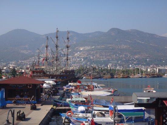 The harbor: Kikötő