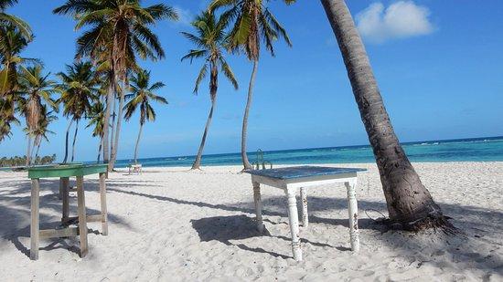 Bayahibe, Dominican Republic: Ausflug Saona Crusoe VIP mit Savvistours
