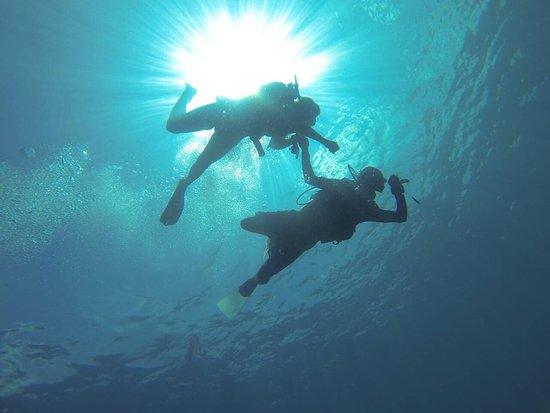 Hangnaameedhoo Island: Scuba Diving & Whale shark Explore
