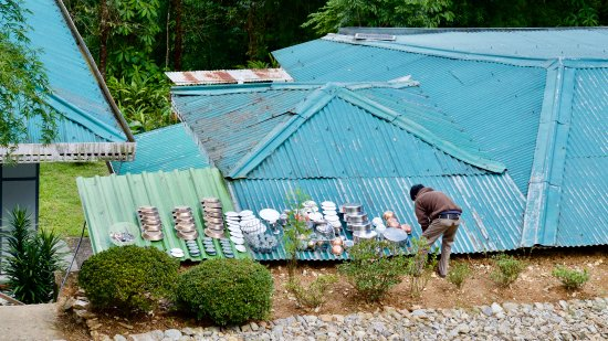 Rumtek, Indien: Das Geschirr wird zum Trocknen auf dem Dach gelegt. Wunderbar!