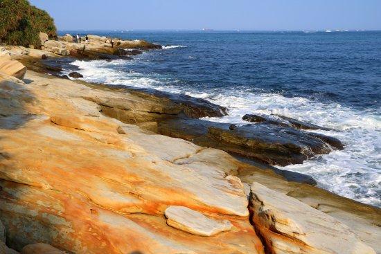 Mysterious Coast