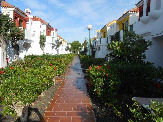 Hall d 39 acceuil picture of bungalows vistaflor for Bungalows jardin dorado