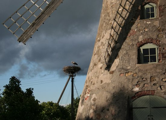 Cesis, Letonia: Araishi wind mill - Āraišu vējdzirnavas | Cēsis, Vidzeme region, Latvia
