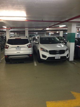 Embassy Suites by Hilton Alexandria-Old Town: Parking