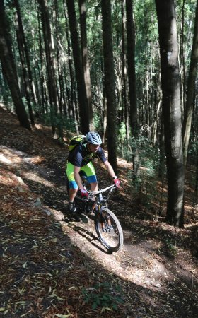 Cycling Rentals & Tours: down we go