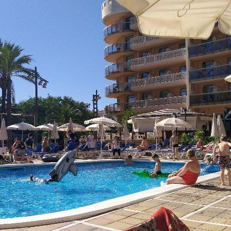 Hotel-Aparthotel Dorada Palace: Je conseille a tous le dorada palace, tout est positif, magnifique hôtel, personnel au top.