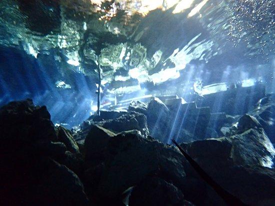 Cenote Chikin Ha : photo1.jpg