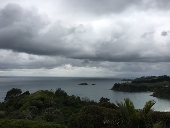 Waiheke Island, New Zealand: photo2.jpg