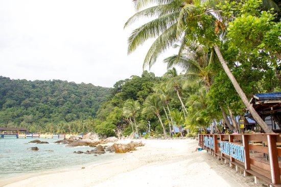 Zdjęcie Coral View Island Resort