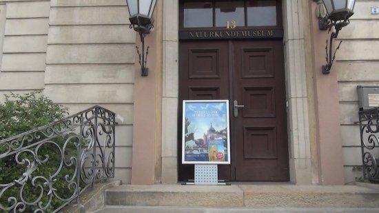 Naturkundemuseum Potsdam: Naturkundemuseum
