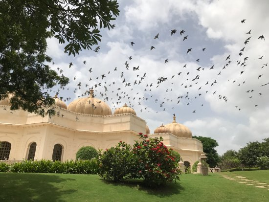 The Oberoi Udaivilas: 70 year Independence Day.....such a special location!