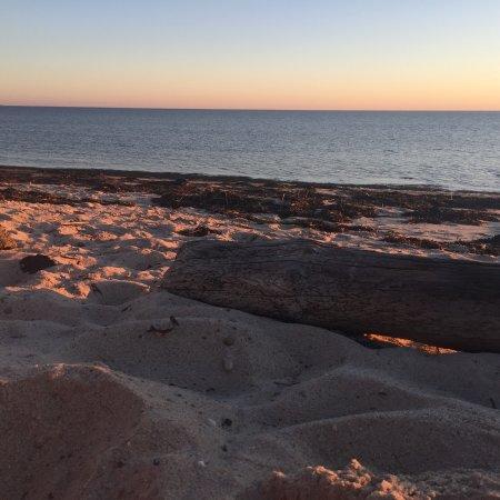 Sandbars on Cape Cod Bay: photo2.jpg