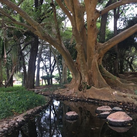 Tshipise, Sudáfrica: photo3.jpg