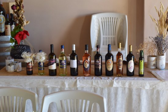 Discover Lucca with Elena: Wine tasting