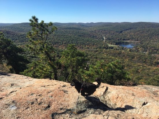 Bear Mountain, NY: Overlook