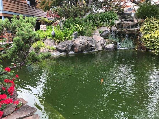 Best Western Seacliff Inn: photo3.jpg