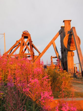 Butte, MT: Flowers with the mill.