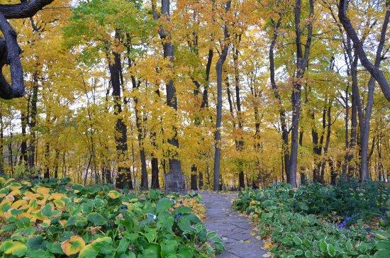 Чанхассен, Миннесота: Arboretum Japanese Gardens