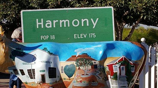 Harmony, Kaliforniya: 20171021_162052_large.jpg