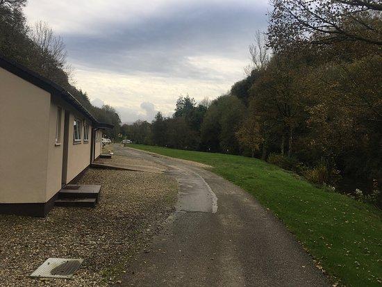 Llwyngwair Manor: photo6.jpg