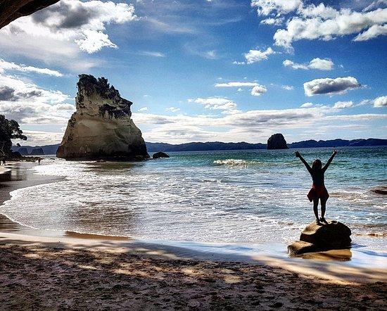 Kiwi Day Trips