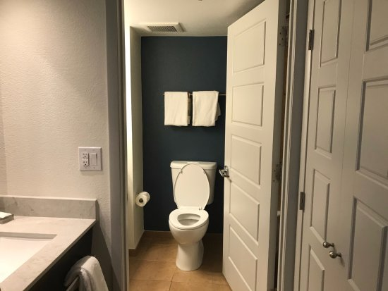 Rosen Centre Hotel: Sink and bathroom area