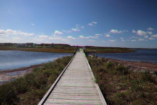Dominion Beach Provincial Park