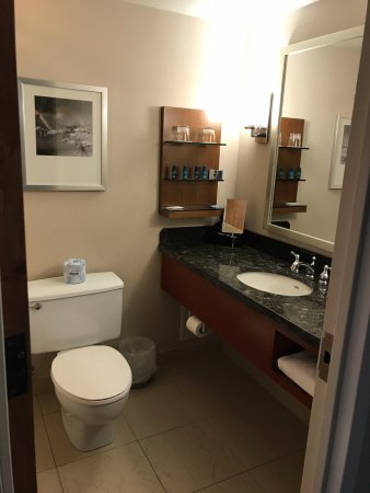 Delta Hotels by Marriott Racine: Standard bathroom but good water pressure on the shower