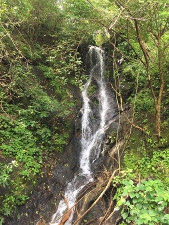 Nicoya, كوستاريكا: photo2.jpg