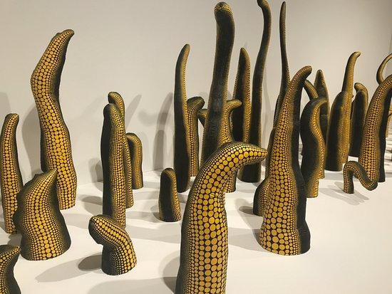 Seattle Art Museum: Kusama
