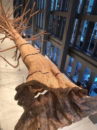 Seattle Art Museum: Lobby