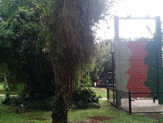 Iguazu Grand Resort, Spa & Casino: Zona de escalada para chicos, escalan y cuando llegan a la cima se tiran con la tirolesa.-