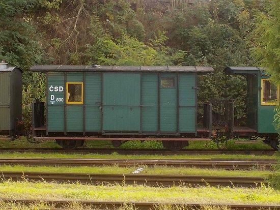 Jindrichuv Hradec, Czech Republic: Heitage carriage