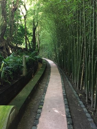 Quinta da Mo: Garden path lined with by waterway and bamboo