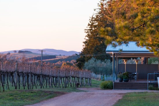 Rowlee Wines