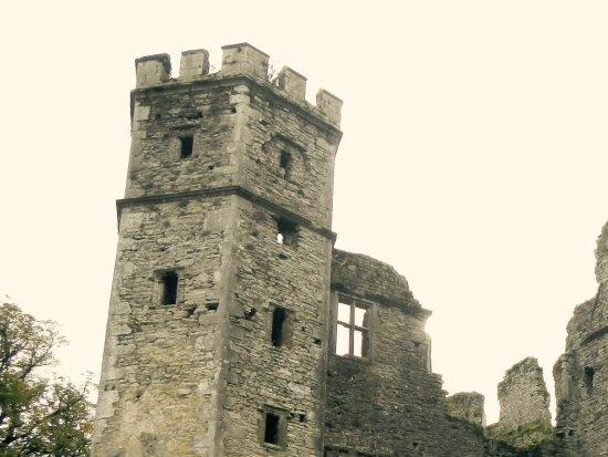 Mallow Castle: Grand old castle