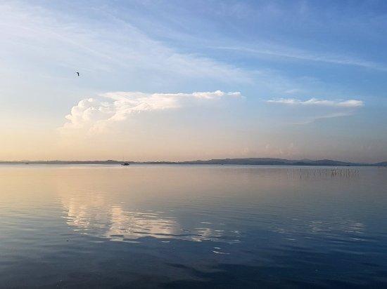 Riau Islands Province, إندونيسيا: IMG_20171029_205539_634_large.jpg