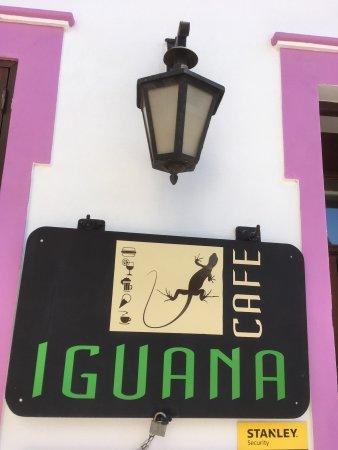 Iguana Cafe