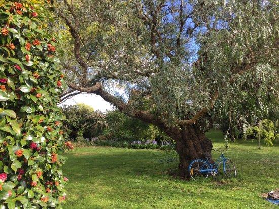 Barrington, Avustralya: photo3.jpg