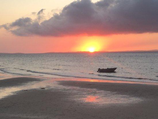 Kingfisher Bay Resort: photo2.jpg