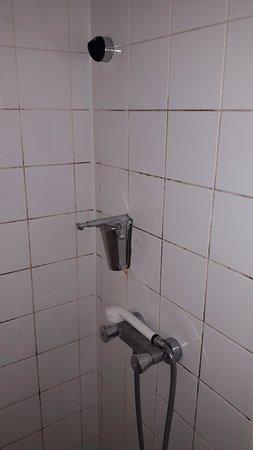 Appoigny, Francia: l'état de la douche trois étoilées