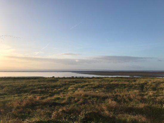 Powfoot, UK: sunrise walking the dogs along the site