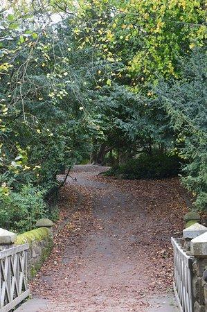 Saltwell Park: FB_IMG_1509357281315_large