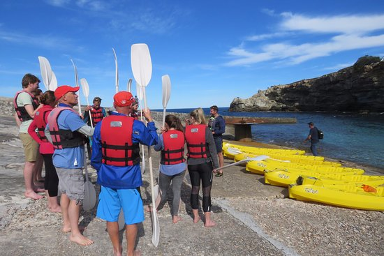 Hermanus, Güney Afrika: Safety talk before hand with guide Rian.