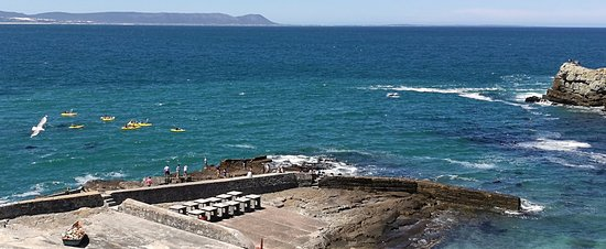 Hermanus, Güney Afrika: Look at the whale (at about 2.00 O'clock in the picture)