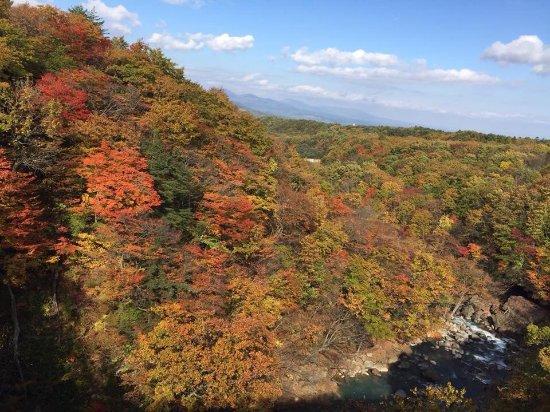 Ajigasawa-machi, Japonya: photo3.jpg