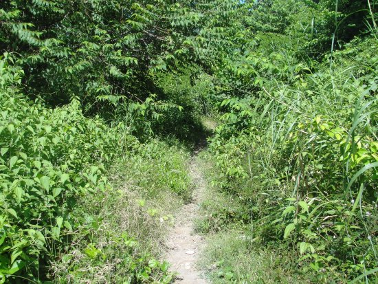 Koh Tonsay (Rabbit Island) : Internal Route - Beach hopping